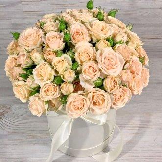 15 кустовых роз в коробке